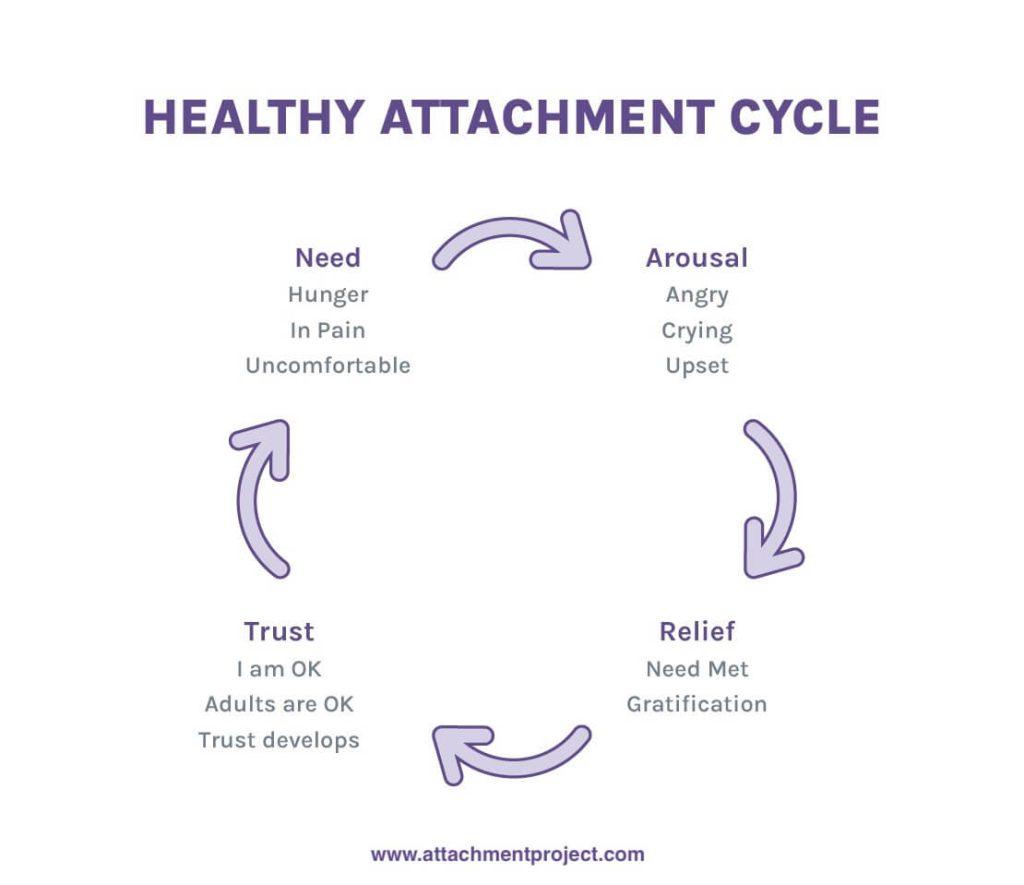 Avoidant attachment secure Attachment Type